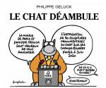 Le Chat déambulle